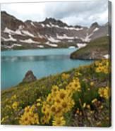 Columbine Lake And Alpine Sunflower Landscape Canvas Print