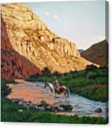 Comanche Gold Canvas Print