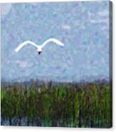 Come Fly Away Canvas Print