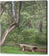 Come Sit With Me Awhile Canvas Print