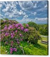 Come To The Craggy Canvas Print