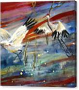 Coming In To Roost Canvas Print
