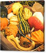 Composition Of Various Gourds In A Basket With Vignetting Canvas Print