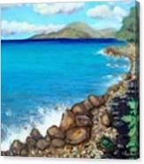 Concealed Crustacean  Canvas Print