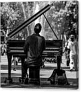 Concert In The Park Canvas Print
