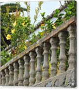 Concrete Banister And Plants Canvas Print
