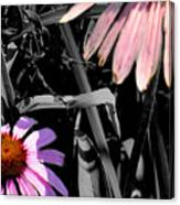 Cone Flower Tapestry Canvas Print