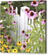 Cone Flowers And Fence Canvas Print