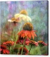 Coneflower Garden 2789 Idp_2 Canvas Print