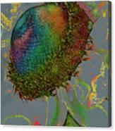 Confetti Flower Canvas Print