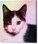 Confetti Kitty Canvas Print