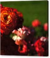 Confetti Roses Canvas Print