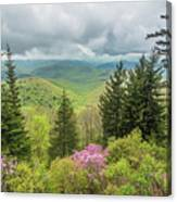 Conifers And Blooms Canvas Print