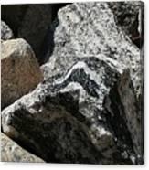 Connecticut Stones Canvas Print