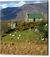 Connemara Cottage Ireland Canvas Print