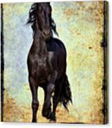Conqueror Canvas Print