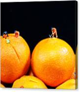 Construction On Oranges Canvas Print
