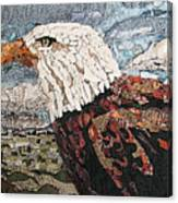 Consumer Eagle Veiw  Canvas Print