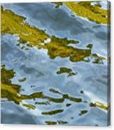 Continental Drift Canvas Print