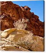 Contrasting Rocks Canvas Print