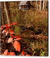 Cook Cabin Canvas Print
