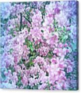 Cool Blue Apple Blossoms Canvas Print