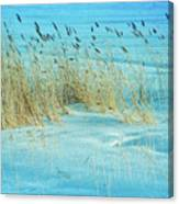 Cool Blue Blowing In The Wind Canvas Print