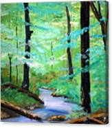 Cool Mountain Stream Canvas Print