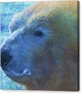 Cool Polar Bear Canvas Print