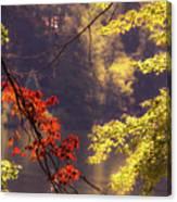 Cool Vermont Autumn Day Canvas Print