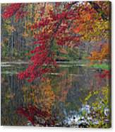 Cooper Mill Pond Canvas Print