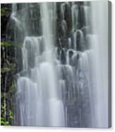 Coopey Falls Canvas Print
