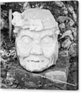 Copan Ruins Artifacts IIi Canvas Print