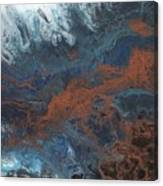 Copper Abstract 2 Canvas Print