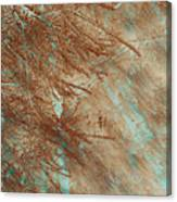 Copper Pines Canvas Print