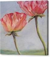 Coquelicots De Californie Canvas Print