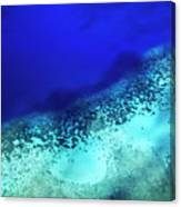 Coral Reef Seen Through Clear Waters Surrounding Mosso Island Canvas Print