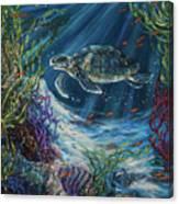 Coral Reef Turtle Canvas Print