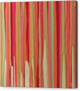Coral Stripe  Canvas Print