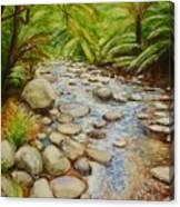 Coranderrk Creek Yarra Ranges Canvas Print