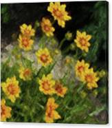 Coreopsis Tickseed Canvas Print