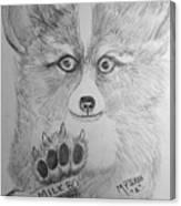 Corgi Pup Canvas Print