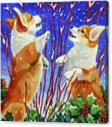 Corgi Snow Puppies Canvas Print