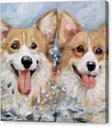 Corgi Splash Canvas Print