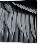 Cormorant Wing Feathers Abstract Canvas Print