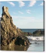 Cormorants At El Madador Beach Canvas Print