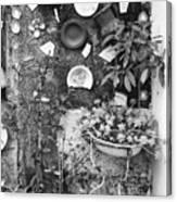Corner Garden - Sao Miguel - Azores Canvas Print