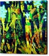 Corner Of The Woods Canvas Print