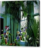 Corner Office, Key West, Fl Canvas Print