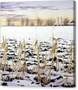 Cornfield In Winter Canvas Print